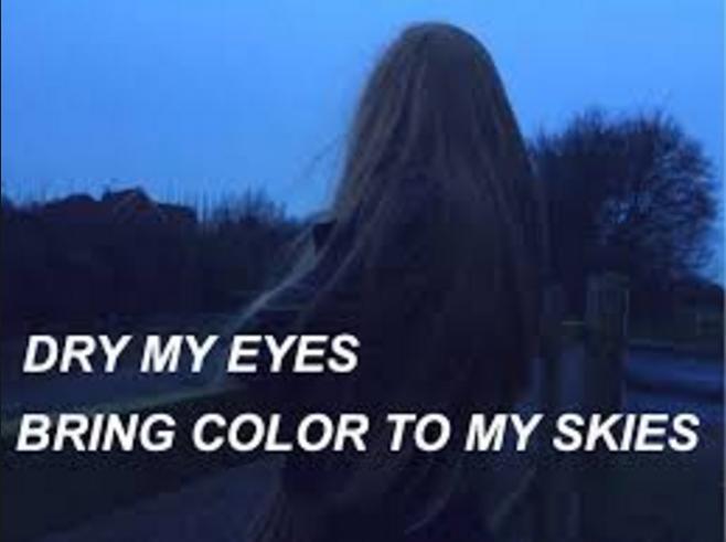 Happy Little Pill-Troye Sivan